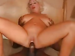 Anal, Big Boobs, Big Butts, Hardcore, Mature